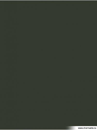 Купить Колготки женские TEO 80 LG, Charmante, зеленая олива