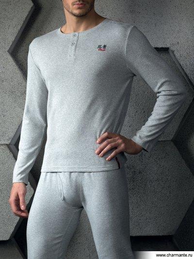 Купить Толстовка мужская IFMZG 771232, Charmante, светло-серый меланж